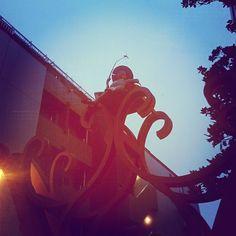 高円寺の釣り師 桃園川かな