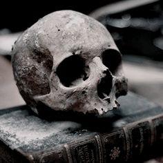 Sherlock Holmes, Penny Dreadful, Necromancer, Character Aesthetic, Skull And Bones, Elder Scrolls, Memento Mori, The Villain, Hades