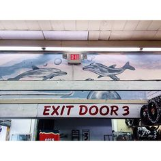 """Exit Door 3. Dolphins swim overhead at the Fantastic Indoor Swap Meet. #myfeatureshoot #lasvegas #dolphin"" Photo taken by @mikaylawhitmore on Instagram, pinned via the InstaPin iOS App! http://www.instapinapp.com (03/22/2016)"