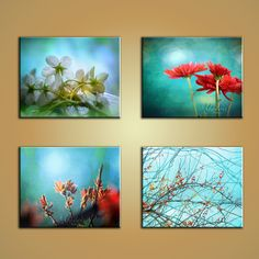 Four seasons Cherry blossoms summer flowers maple by Yashvir