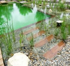 You are able to completely change your backyard into an awesome natural pool with exceptional water features. A natural pool design is a significant extension to your property. Swimming Pool Pond, Natural Swimming Ponds, Natural Pond, Pool Water, Small Pool Design, Dream Pools, Cool Pools, Pool Houses, Pool Designs