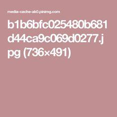 b1b6bfc025480b681d44ca9c069d0277.jpg (736×491)