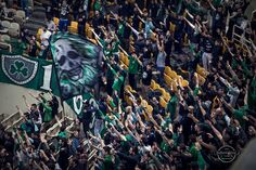 Panathinaikos BC - OAKA-Arena Istanbul, Greece, Basketball, Painting, Art, Greece Country, Art Background, Painting Art, Paintings