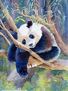 Up a tree, and I like it that way by gabriele baber Watercolor ~ 11 x 14 Wildlife Paintings, Wildlife Art, Animal Paintings, Animal Drawings, Panda Sketch, Cute Small Animals, Panda Wallpapers, Pretty Wallpapers, Art Through The Ages