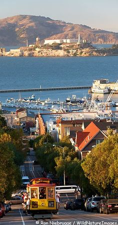 Cable car and Alcatraz Island in San Francisco, California • photo: Ron Niebrugge / WildNatureImages