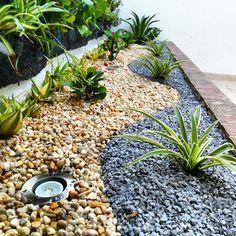 jardines secos - Buscar con Google