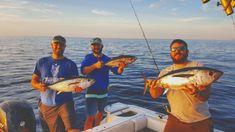 Blackfin Tuna, Tuna Fishing, Fishing Report, Types Of Fish, Key West, Trout, Key West Florida, Brown Trout