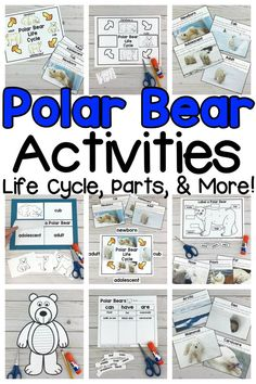 Are your kids learning all about polar bears or Arctic animals? Then, these Polar Bear Activities are a must have! This packet is full of resources to help you teach and your Kindergartners, first graders, and second graders learn all about the life cycle and parts of a polar bear. From posters to cut and paste diagrams to a writing craft, there are a variety of activities your students will enjoy. Click on the picture to see all of the polar bear resources included! #scienceresources #polarbear