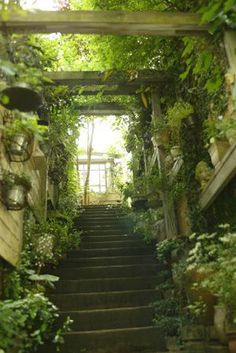 [orginial_title] – Maxine Cole Art, Architecture & Culture You might be able to find inspiration here for a green patch at home. Garden Signs, Abandoned Places, Garden Paths, Beautiful Gardens, Interior And Exterior, Outdoor Living, Beautiful Places, Scenery, Photos