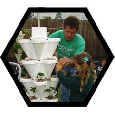 Vertical towers like these can grow a lot of vegetables in a small footprint.