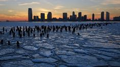 Planet Today News:World Braces For '#Apocalyptic_Weather' As Polar Vortex Splits In Two