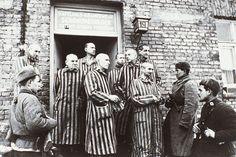 Auschwitz sobrevivientes