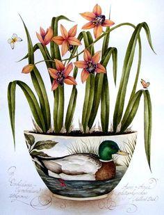 (8) Gallery.ru / Фото #33 - Орхидеи - lanaluz