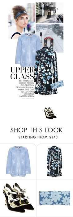 """""""Título 273"""" by drigomes ❤ liked on Polyvore featuring Clover Canyon, Nicholas Kirkwood and Roger Vivier"""