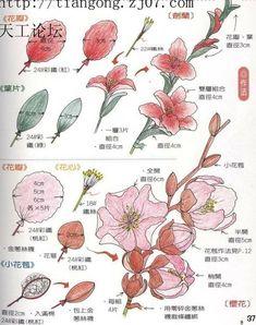 Nylon Flowers.