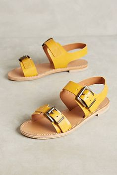 Coupon Birkenstock Piazza Italy Fitted Foot | Education Fund