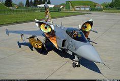 Tigermeet2011 Gripen Czech Air Force