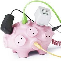 Wired Pig
