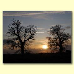 Lincolnshire Sunset Near Temple Bruer