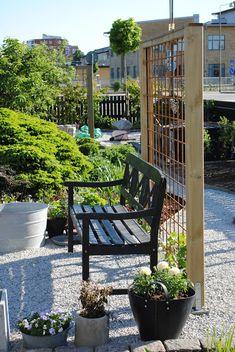 De Tages tuin: New latwerk muur in plaats