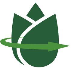 Acquista Anthurium acquatico | Bakker.com