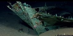 Scientists exploring marine life in the Gulf of Mexico earlier this year uncovered a shipwreck site believed to be 200-years-old on May 17, 2012. (NOAA Okeanos Explorer Program)