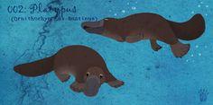 002:  Platypus by Aphrael7.deviantart.com on @DeviantArt