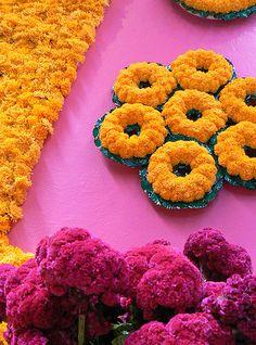 Flores de Dia de Muertos, Cempasuchill
