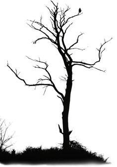 Утро на ферме Tree Branch Tattoo, Tree Tat, Tree Drawings Pencil, Tattoo Drawings, Tatoo Designs, Small Forearm Tattoos, Forest Tattoos, Mountain Drawing, Deer Silhouette