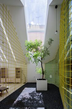 Manuel Villau0027s Habitable Polyhedron   A Family Garden Retreat   Sustainable  Design, Family Garden And Eco Architecture