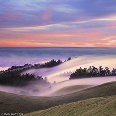 Mount Tamalpais Dreamscape by Della Huff Photography, via Flickr
