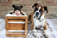 Newborn Baby with dog Crate http://lvrphoto.com/