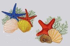 Seashells 3 Set, 10 Designs - 2 Sizes! | Ocean/Nautical | Machine Embroidery Designs | SWAKembroidery.com