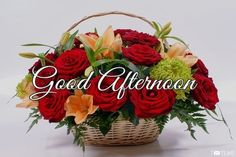top good afternoon images photo and good afternoon wishes quotes msg The Rising Of Sun Is The MorningTime And The Setting Of Sun IsThe Evening Time Afternoon Messages, Funny Good Morning Messages, Happy Morning Quotes, Good Morning Greetings, Good Afternoon Images Hd, Good Afternoon Quotes, Morning Rose, Good Morning Flowers, Good Morning Gif Disney