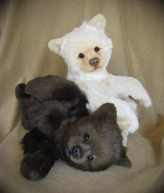 Realistic teddy bears: Karlo the Kermode bear (white) and black bear cub by Kimberly Whitlock, 'Bear' Bottoms Originals