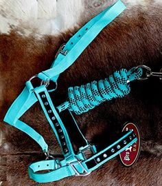 Horse Nylon HALTER Lead Rope Noseband Turquoise Teal Bling Tack Rodeo 606122 Prorider http://www.amazon.com/dp/B010RBP1M8/ref=cm_sw_r_pi_dp_dEMmwb0J19W39
