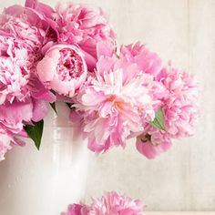 Buy Rose & Peony Fragrance Oil and other pure fragrance oils from Bulk Apothecary at Wholesale prices
