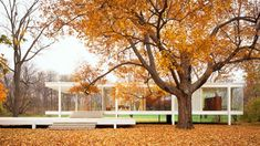Farnsworth House, Plano, Illinois, by Mies van der Rohe (1945)