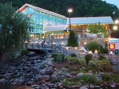 Ripley's Aquarium. Gatlinburg, Tennessee