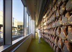 Gallery of Industrial Factory in Preci / Enzo Eusebi+Partners - 4
