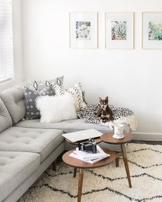 Peggy Sectional and Frames
