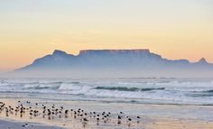 Tafelberg in oggend mis. South Afrika, Most Beautiful Cities, Beautiful Things, Volunteer Abroad, Table Mountain, Rest Of The World, Cape Town, West Coast, Places To Visit