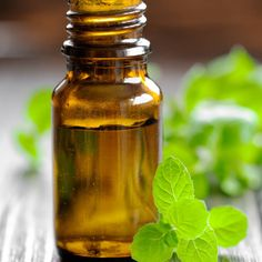 Top 5 Essential Oils for Allergies