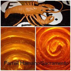 Farrell Hamann Fine Art/Writing. Sacramento, California USA