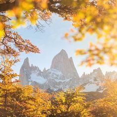 Wonderful Fitzroy in autumn framing #patagonia #Argentina #Fitzroy #chalten  Danielkordan.com by danielkordan