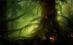 Fantasy Forest Backgrounds Fantasy Forest Wallpaper Fantasy forest Forest elf Fantasy landscape