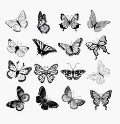 Tattoos And Body Art piercing tattoo shop Mini Tattoos, Body Art Tattoos, Cool Tattoos, Tatoos, Tattoo Drawings, Easy Small Tattoos, Small Black Tattoos, Tattoo Black, Tattoo Sketches