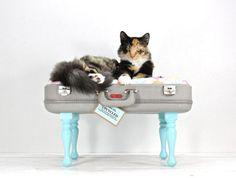 forrage:    We can't get enough of Atomic Attic's upcycled, vintage, and handmade items. Take this Upcycled Suitcase Pet Bed, for instance.. What more can we say? Awesome, inventive, upcycled treasures. Great work.  - Team Forrage