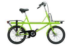 Lorri en verde lima. Otra preciosidad.