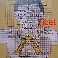 . Diversas regiones de oriente coinciden en canales de circulación de la energía en el cuerpo: medicina tibetana